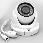 Starlight Eyeball 1080P IP Surveillance Camera SA-D6-IP2S